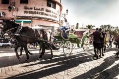 llegada_marrakech_convencion_anual_salerm_cosmetics_proline_80